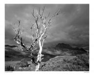 Loch Maree & Slioch Poster