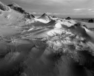 Forvie Sand Dunes